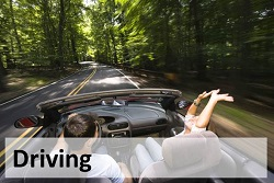 Two people in a convertable driving on a tree lined street