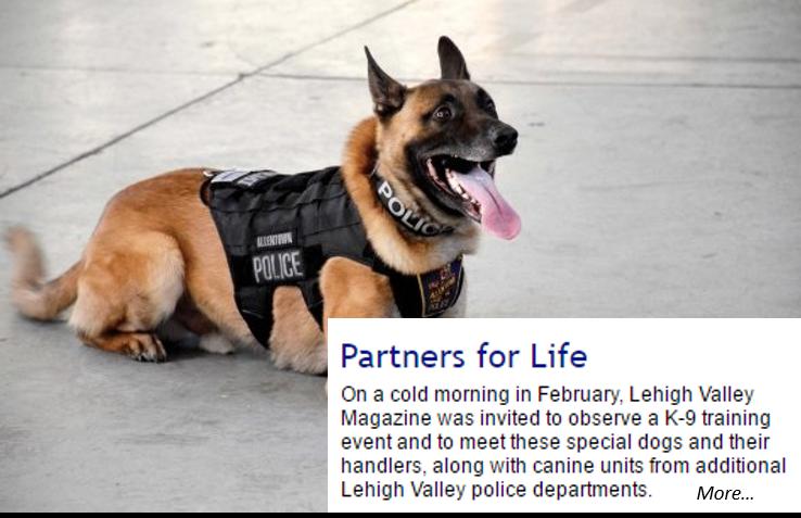 Rio Rancho Police Department gets vests for K9 Unit | Police K-9 ...